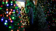 Bunte Lichter, verspielte Kugeln: Die Deko-Trends an Weihnachten gehen auseinander, während das Thema Nachhaltigkeit an Bedeutung gewinnt. Auch künstliche Bäume finden vielerorts Anwendung.