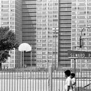 """Chicago drückt die Kosten für Sozialwohnungen wie die von """"Cabrini-Green"""": Rasen weicht Beton, Müll bleibt liegen und Gangs beginnen, den Block zu kontrollieren. Aufnahme aus dem Jahr 1970"""