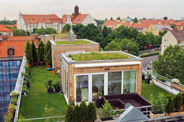 dachgarten hoch zwei soviel gr n wie auf diesem dach in m nchen ist selten. Black Bedroom Furniture Sets. Home Design Ideas