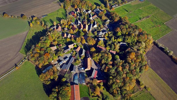 Querköpfe in Rundlingen