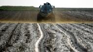 Stickstofffrachter: Immer noch wird zu viel über den Bedarf der Pflanzen und der Bodenorganismen gedüngt.