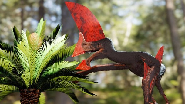 Komplettes Fossil eines Flugsauriers rekonstruiert