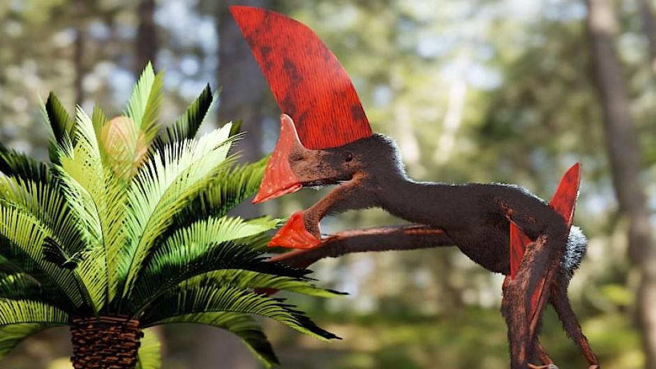 Künstlerische Darstellung eines Pterosauriers der Art Tupandactylus navigans.