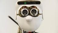 """Der humanoide Roboter """"Apollo"""" ausTübingen"""