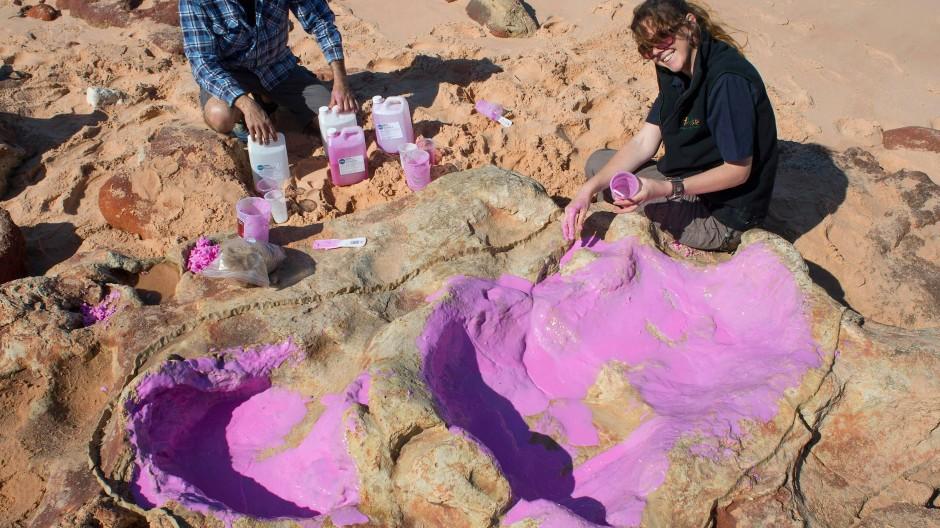 Die Forscher um Steven Salisbury konservieren die größten Dino-Spuren.