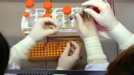 Stammzellforschung im Labor