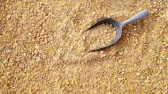 Die Aminosäure Methionin im Futter verbessert das Wachstum von Geflügel. Die Jahresproduktion von Methionin beträgt derzeit weltweit etwa eine Million Tonnen.