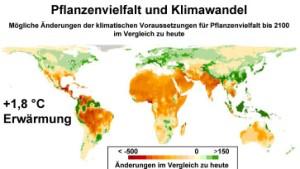Wie die Pflanzenvielfalt unter Überhitzung leidet