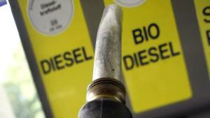 Biosprit in der Klimafalle