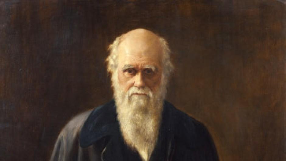Charles Robert Darwin auf einem Bild von M.B.Messer aus dem Jahr 1912, das gegenwärtig in einer Ausstellung über Darwin und die Kunst in der Schirn Kunsthalle in Frankfurt zu sehen ist.