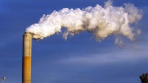 Klimaschutz Schtonk!