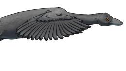 Der tollkühne Dinoflieger