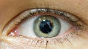 Reaktion der Augen verraet sexuelle Orientierung