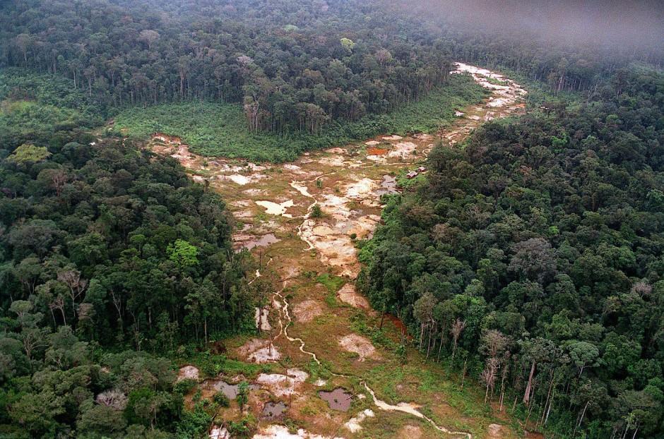 Entwaldung hat im Amazonasgebiete viele Gründe, einer sind auch Siedler, die es auf das Gold in den Flüssen abgesehen haben.