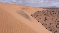 Sanddünen in der Nähe der marokkanischen Ortschaft Tarfaya