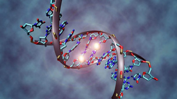 Mit Kaiserschnitt ins Genom