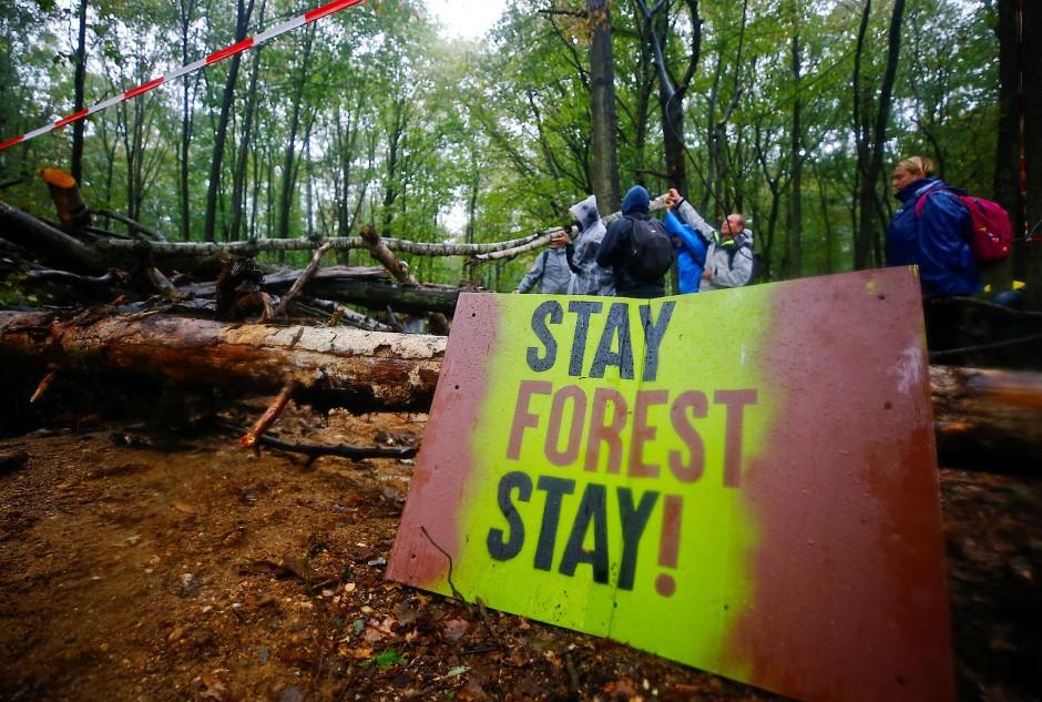 Proteste gegen die Kohleverbrennung und Waldrodung im Hambacher Forst.