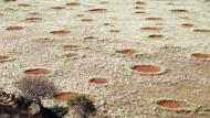 """Inzwischen auch aus Australien bekannt: """"Fairy circles"""" im Steppengras."""