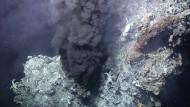 Nahm das Leben seinen Ursprung an solchen Hydrothermalquellen?