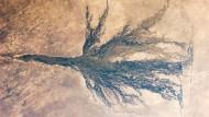 Zwischen den Dünen der Kalahari: An seiner breitesten Stelle war das überflutete Feuchtgebiet im Juni 2011 rund 150 Kilometer breit.