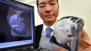 3D-Drucker, Fötus: Natur und Wissenschaft, Glosse
