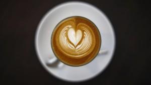 Die Geheimnisse des Kaffee-Genoms