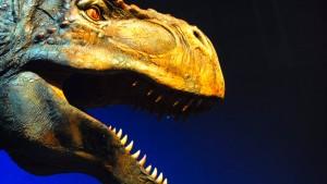 Überraschungsfund in Dino-Knochen