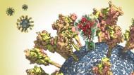 Die Oberfläche des CoV-2-Virus ist gespickt mit Spike-Proteinen. Eines dieser Proteine ist transparent dargestellt, um seine komplizierte Struktur zu zeigen.