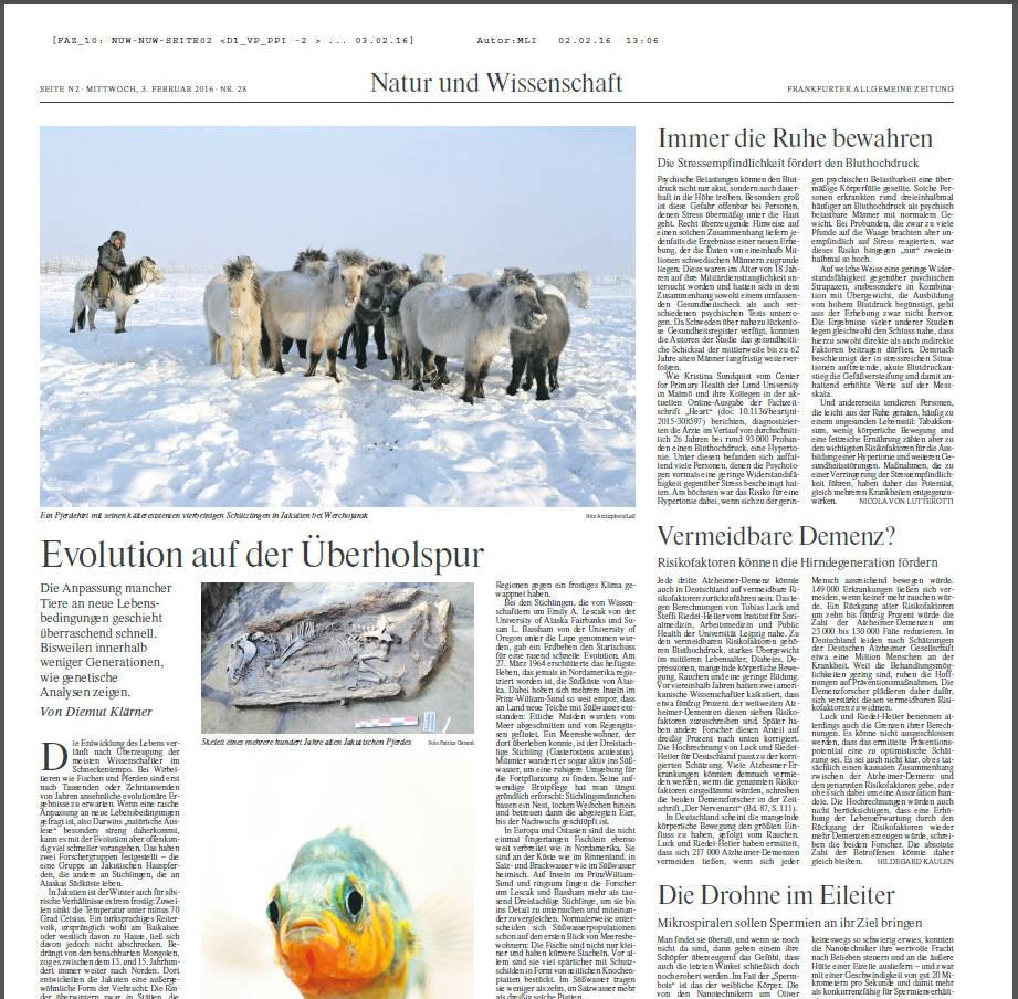 Bild Zeitung Letzte Seite Heute