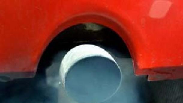 Autoabgase als Scharfmacher für Pollenkörner