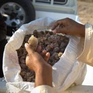 Weihrauch ist im Oman nach wie vor ein hochbezahltes und begehrtes Handelsgut.