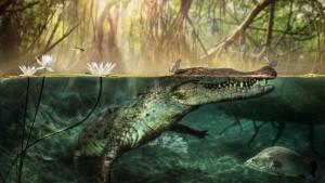Der verschollene Krokodilschädel