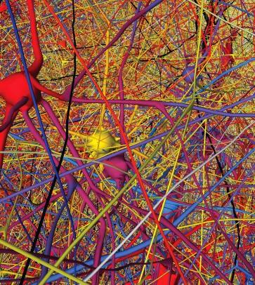 Virtuelle Nervenzellen aus dem Kortex in der Gehirn-Simulation.