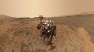Fettiger Marsboden?