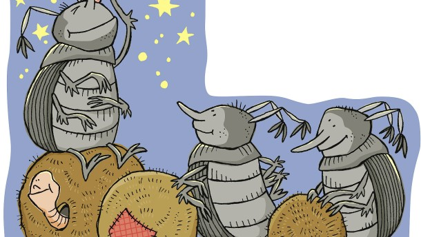 Immanuel Kant und die Käfer