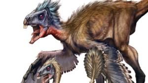Die Mauser der Vogelsaurier