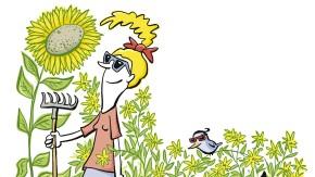 Alles im grünen Bereich: Sonnige Aussichten für den Herbstgarten