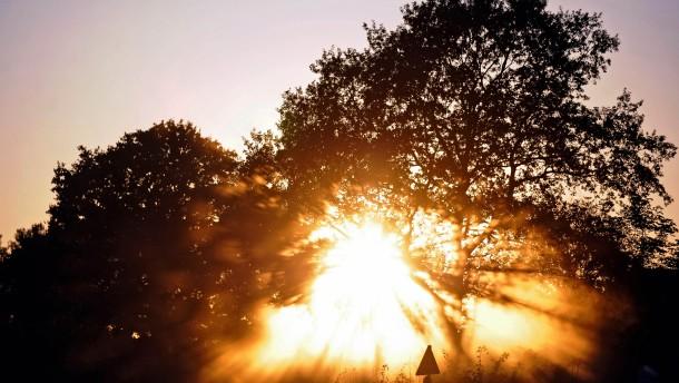 Einstein Lichtgeschwindigkeit Opera Herbstlicht strengt die Augen an