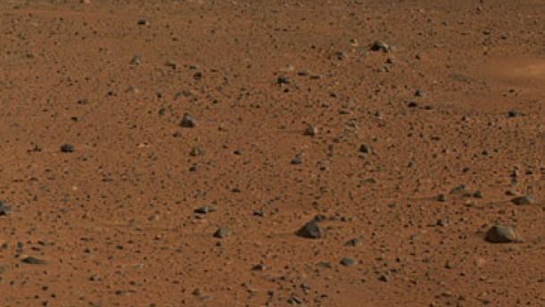 Der ultimative Test auf Marsleben?