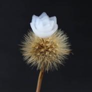 Federleicht und filigran ist die gedruckte Lotusblüte aus einem Silikat-Aerogel