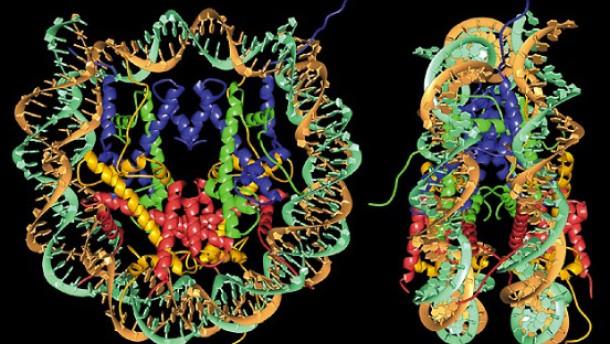 Fremde Mächte im Gehirn und Genom