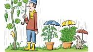 Was jetzt Winzer und Landwirte besonders plagt