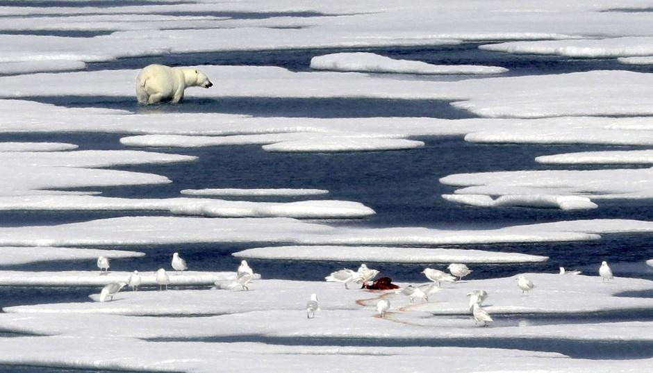 Viele Prozesse, die Teil des Klimas sind, beeinflussen sich gegenseitig. Doch wann verschieben sich auch diese Verhältnisse?