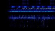 Klangspektrogrammvideo aus Borneo