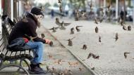 Wenigstens in Berlin finden die Vögel noch ein Auskommen – denn dort glänzt nicht alles vor Sauberkeit wie in manch anderen Städten.
