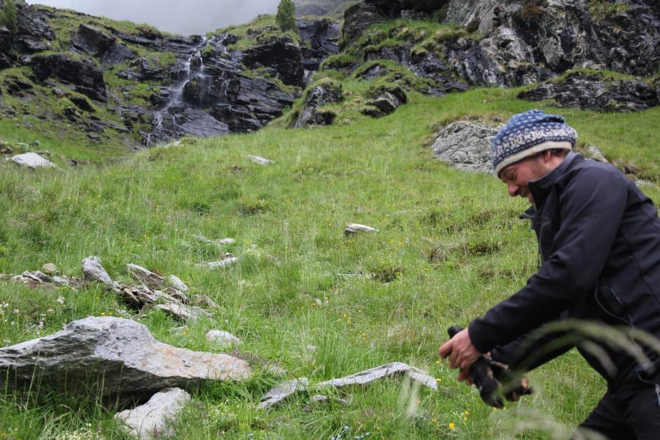 Michael Knollseisen kümmert sich um zwei Bartgeier, die im Mai 2014 in Osttirol ausgesetzt wurden.