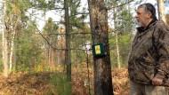 Folgen einer teilweisen Waldrodung am Klang erkennen will.
