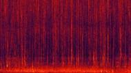 Spektrogrammvideos zweier Aufnahmen eines Korallenriffes in den Fidschi-Inseln
