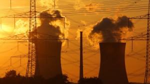 """""""Atomausstieg darf Wirtschaft nicht gefährden"""""""