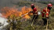 Waldbrand in Portugal unter Kontrolle